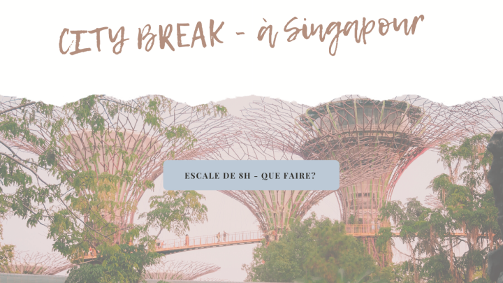 CITY BREAK – Escale de 8H à Singapour, que faire ?